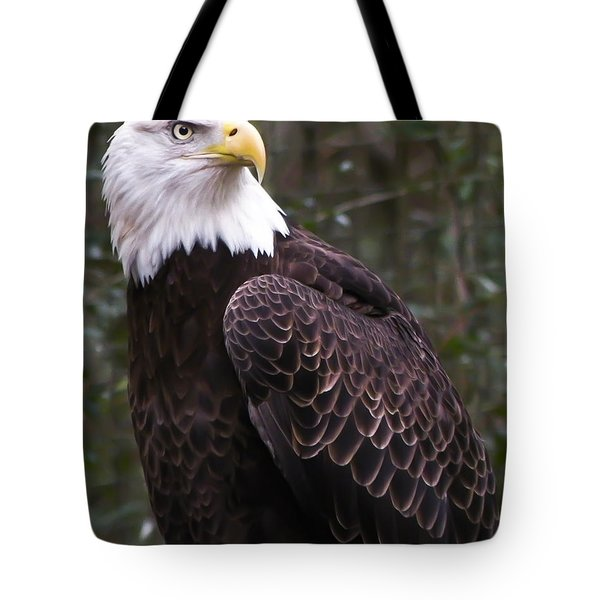 Eye Of The Eagle Tote Bag