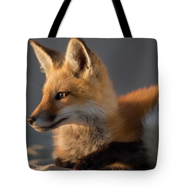 Tote Bag featuring the photograph Eye Of The Fox by Bill Wakeley