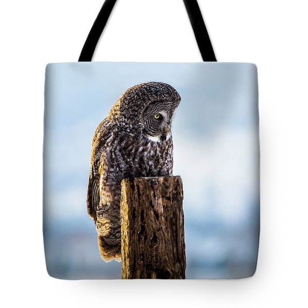 Eye On The Prize - Great Gray Owl Tote Bag
