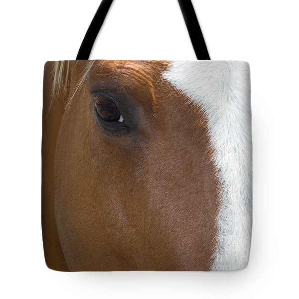 Eye On You Horse Tote Bag