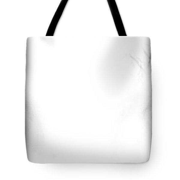 Tote Bag featuring the photograph Eye Sea  by Shana Rowe Jackson