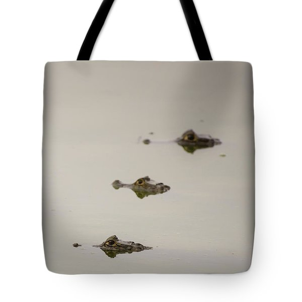 Tote Bag featuring the photograph Eye Spy by Alex Lapidus