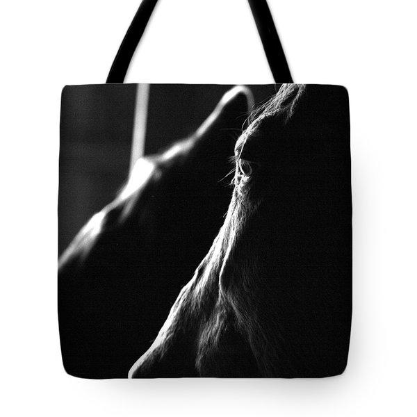 Eye Squared Tote Bag by Angela Rath