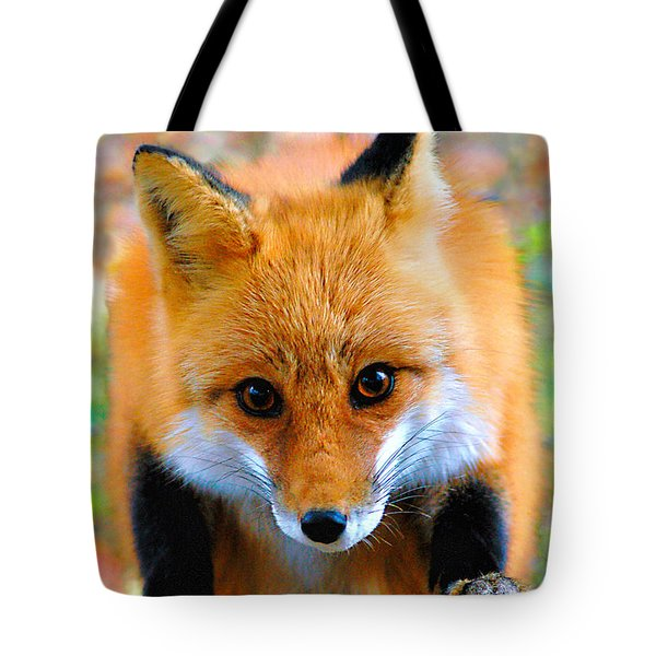 Eye To Eye II Tote Bag