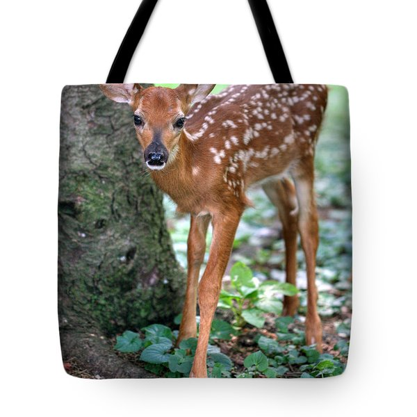Tote Bag featuring the photograph Eye To Eye With A Wide - Eyed Fawn by Gene Walls