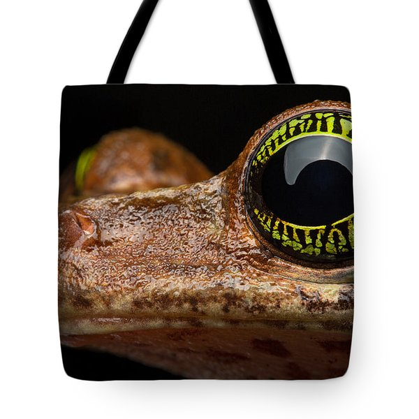 Eye Tropical Tree Frog Tote Bag by Dirk Ercken
