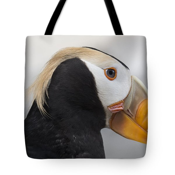 Eyebrows Of The Tufted Tote Bag