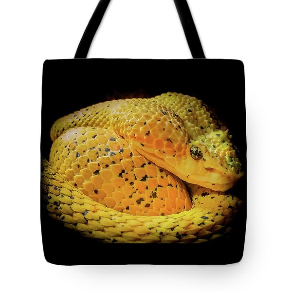 Tote Bag featuring the photograph Eyelash Viper by Karen Wiles