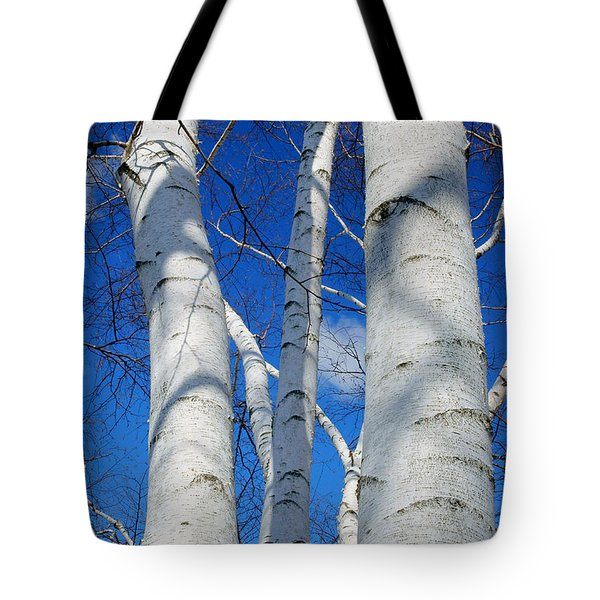 Eyes Of Birch Tote Bag