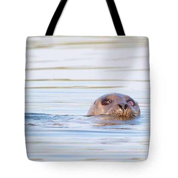 Tote Bag featuring the photograph Eyes Of Doubt by Debbie Stahre