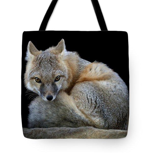 Eyes Of The Fox Tote Bag