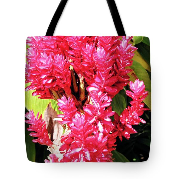 F10 Red Ginger Tote Bag by Donald k Hall