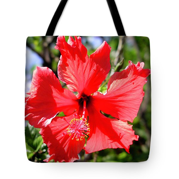 F20 Red Hibiscus Tote Bag by Donald k Hall