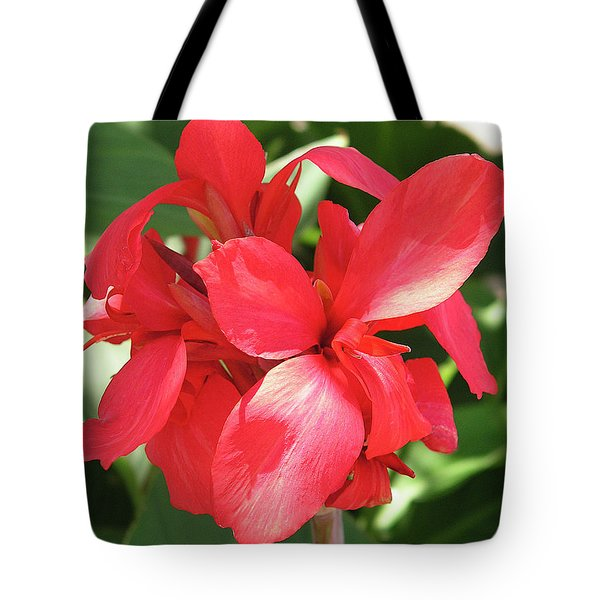 F22 Cannas Flower Tote Bag by Donald k Hall
