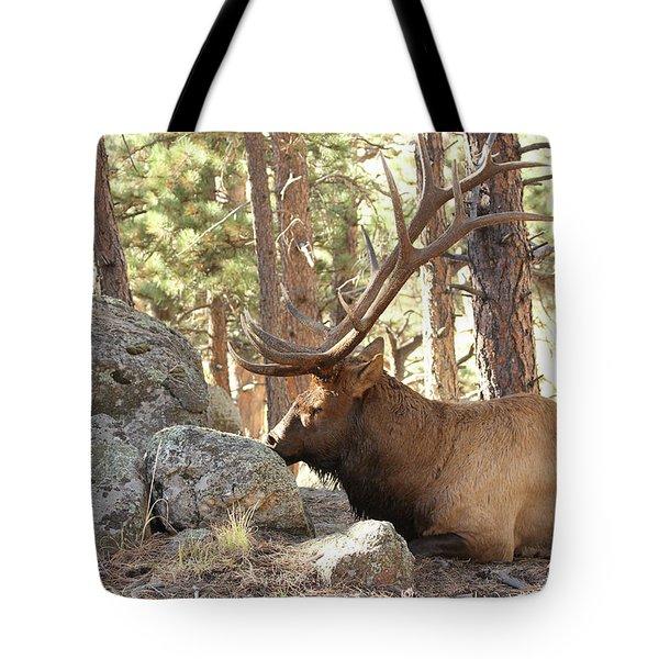 Faabattlescarredbull001 Tote Bag
