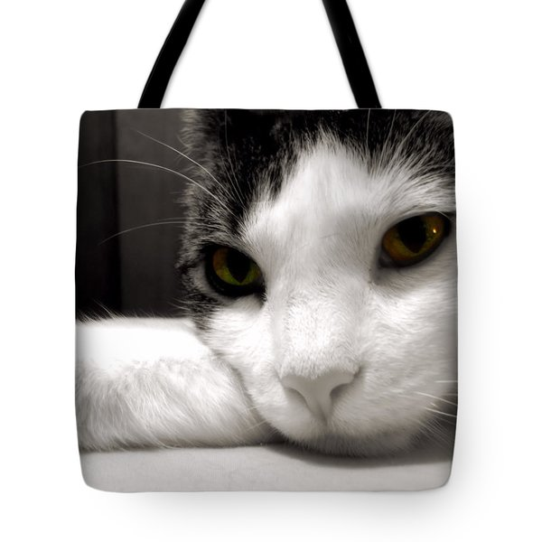 Fabulous Feline Tote Bag by JAMART Photography
