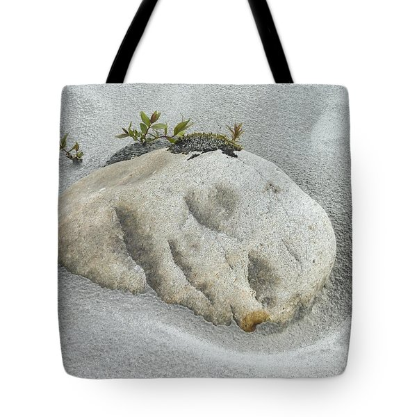Face In The Sand At Baird Glacier Outwash Tote Bag
