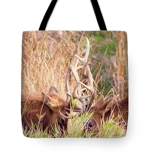 Face Off Tote Bag by Todd Kreuter