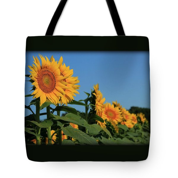 Tote Bag featuring the photograph Facing East by Chris Berry