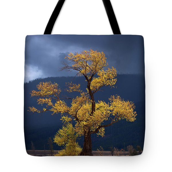 Facing The Storm Tote Bag by Edgars Erglis