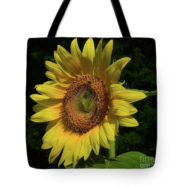 Hand Made By God Tote Bag