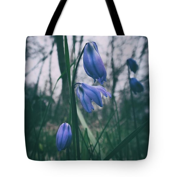 Fade Into The Blue Tote Bag by Karen Stahlros