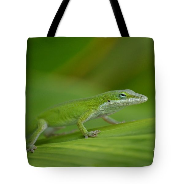 Tote Bag featuring the photograph Fade Into The Green by Kathy Gibbons