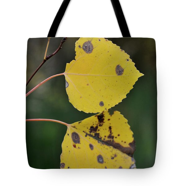 Tote Bag featuring the photograph Fading Aspen I by Ron Cline