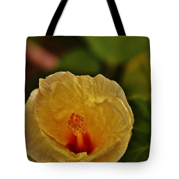 Tote Bag featuring the photograph Fading Beauty by Craig Wood