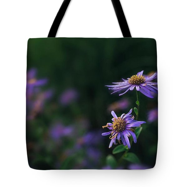 Fading Beauty Tote Bag