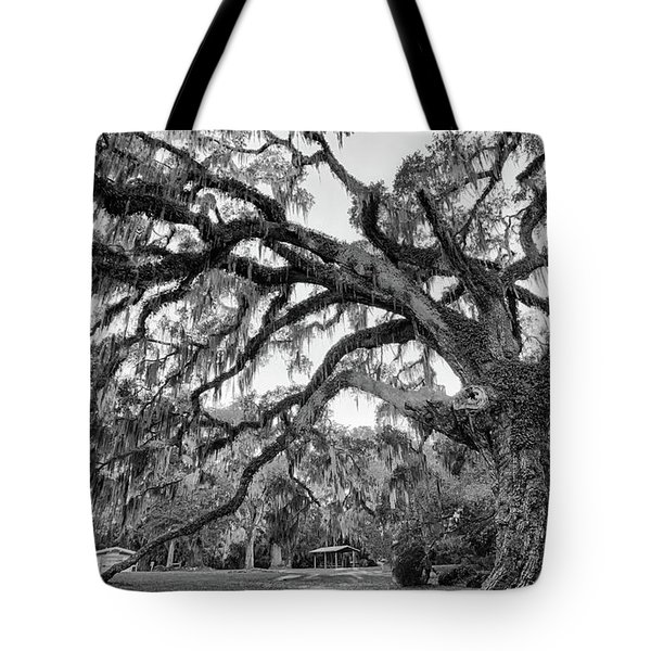 Fairchild Tree Tote Bag
