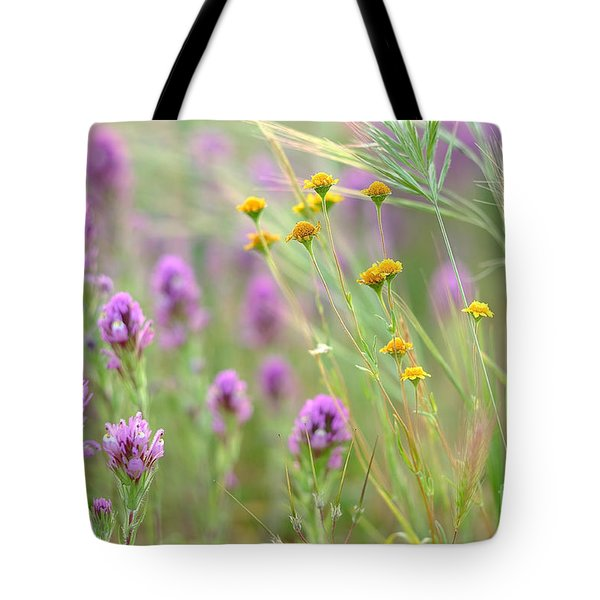 Fairing Of Spring Tote Bag