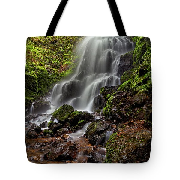 Fairy Falls In Columbia Gorge Tote Bag by David Gn