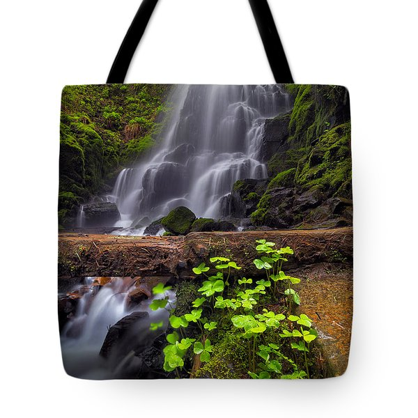 Fairy Falls In Spring Tote Bag by David Gn