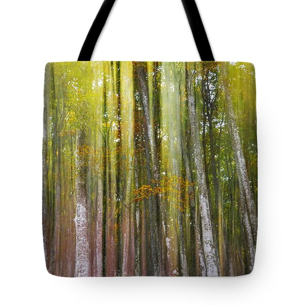 Fairy Forest I Tote Bag