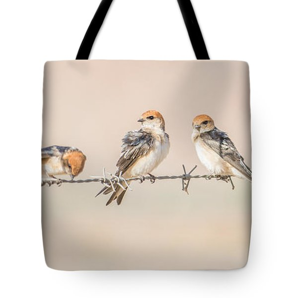 Fairy Martins Tote Bag
