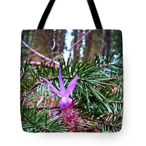 Fairy Slipper  Tote Bag