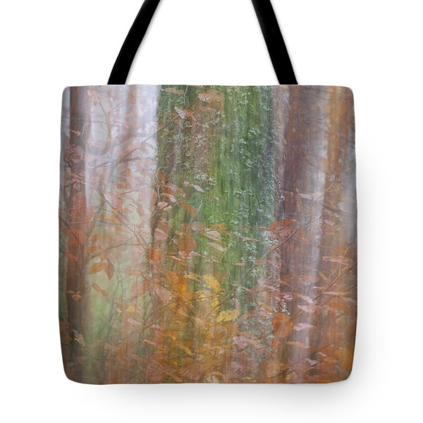Fairy Tree Tote Bag