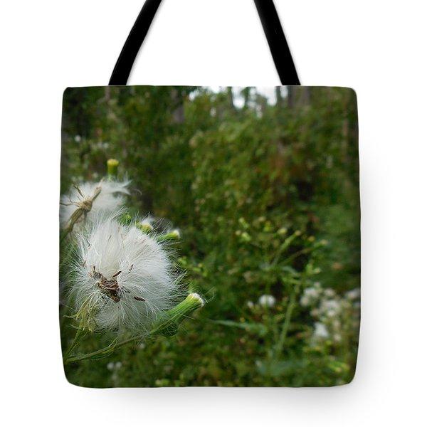 Fairy Woods Tote Bag