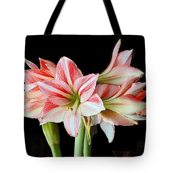 Fairyland Amaryllis  Tote Bag