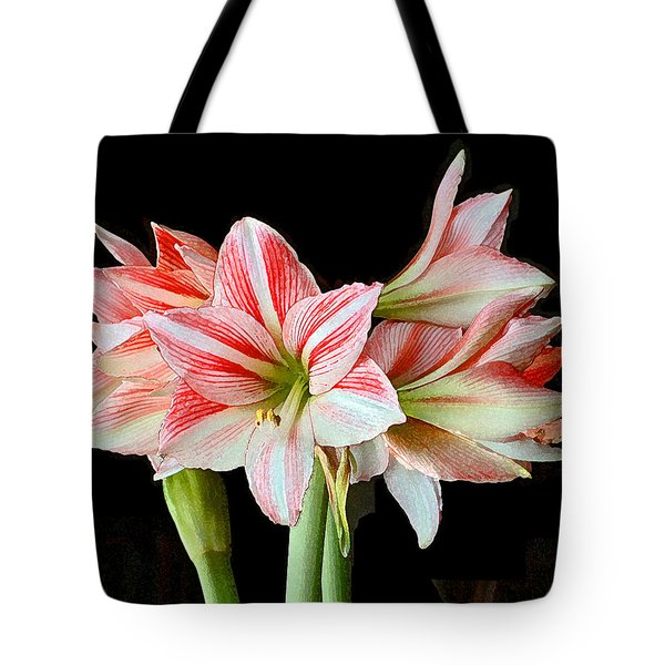 Fairyland Amaryllis  Tote Bag