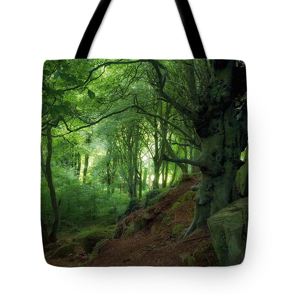 Fairytale Forest, Ireland Tote Bag