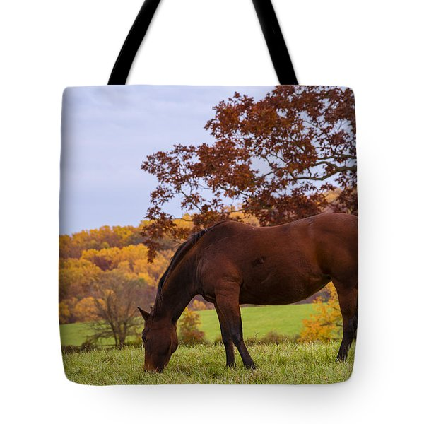 Fall And A Horse Tote Bag by Rima Biswas