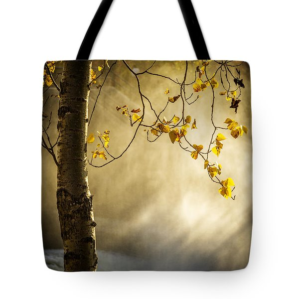 Fall And Fog Tote Bag by Celso Bressan