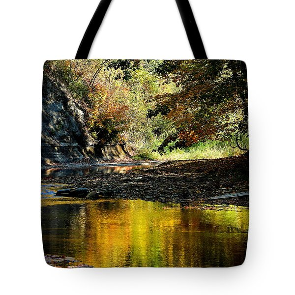 Fall At Big Creek Tote Bag by Bruce Patrick Smith