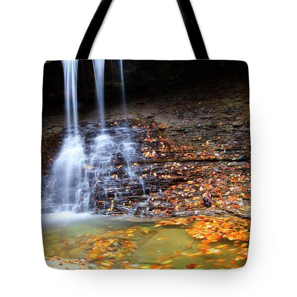 Fall At Blue Hen Falls Tote Bag