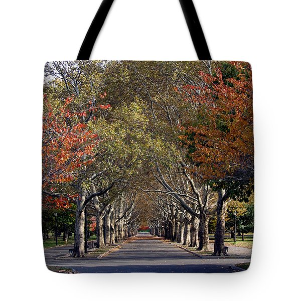 Tote Bag featuring the photograph Fall At Corona Park by Suhas Tavkar