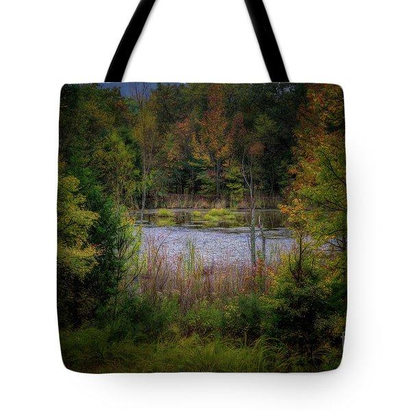 Fall At Fane Creek Tote Bag