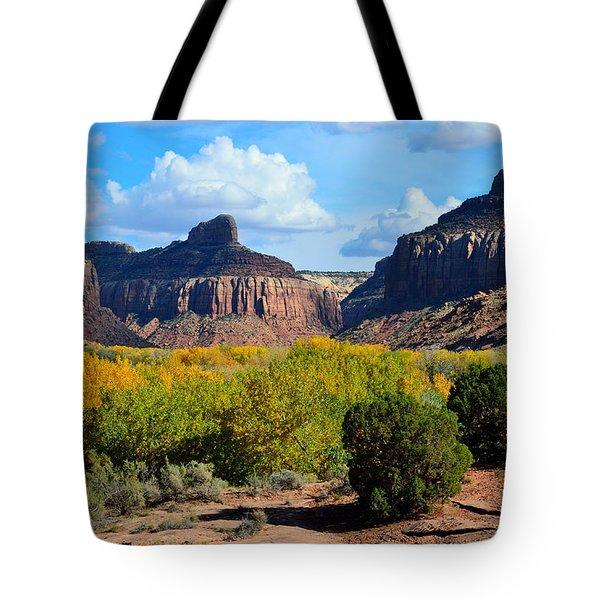 Fall At Indian Creek Tote Bag