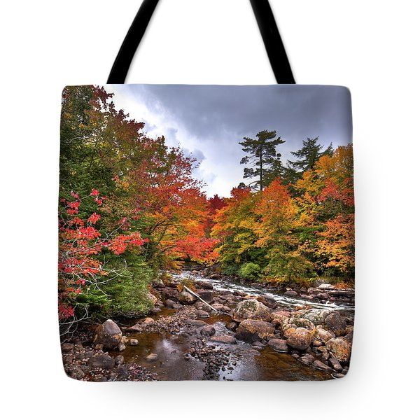 Tote Bag featuring the photograph Fall At Indian Rapids by David Patterson